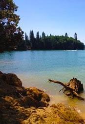 Peninsula campground nid recreation for Scotts flat lake fishing